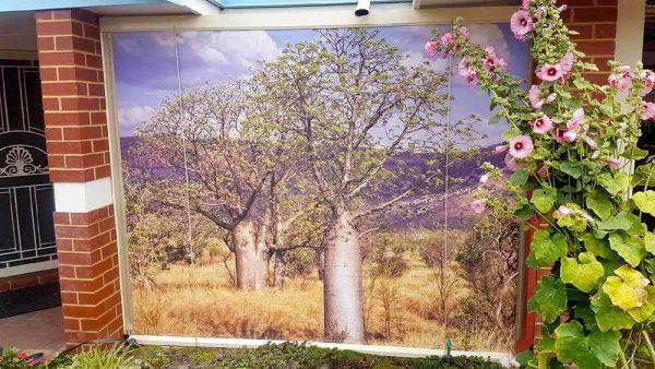 Printed Outside Blind Alfresco Classic - Boab tree